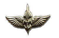 duvdevan logo